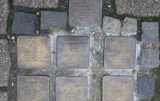 Sieben Stolpersteine für Familie Moses