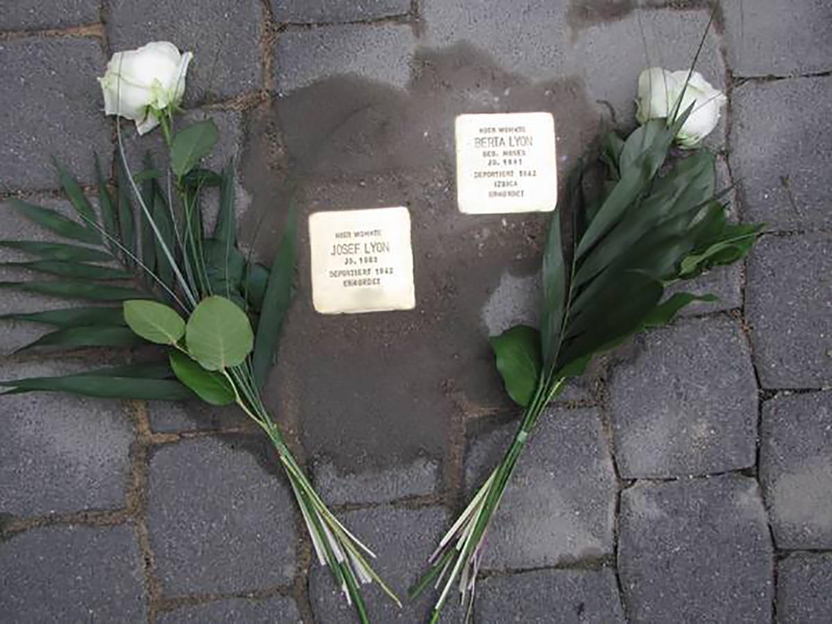 Stolpersteine Josef und Berta Lyon mit weißer Nelke