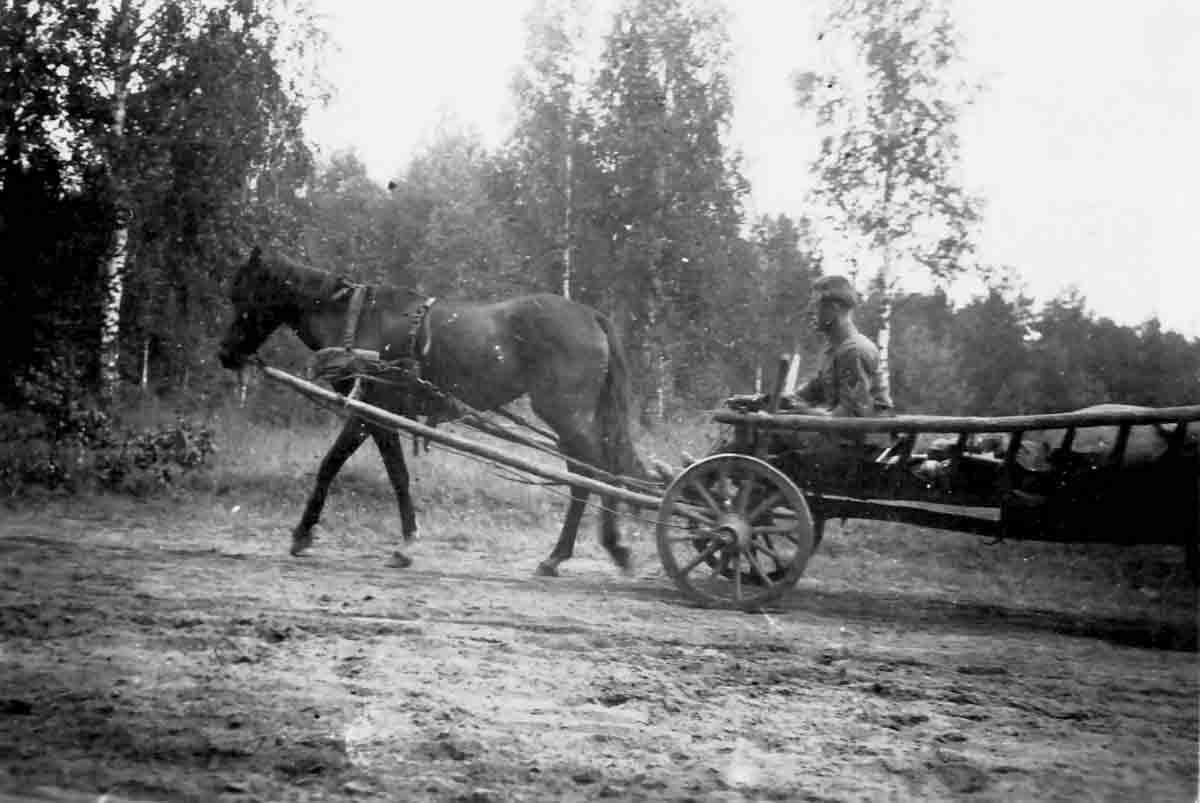 Donsbach Juni 1941 Panje-Wagen_in_Rußlandfeldzug